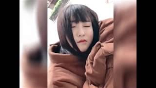 【抖音】TikTok最火热的中国网红熊,可爱逗趣超级搞笑哈哈Hottest, most interesting in China