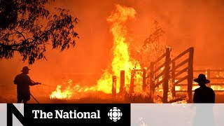 Wildfires in Australia approach Sydney