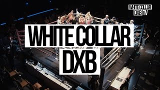 WHITE COLLAR DXB TV // SEASON 1 // SERIES OVERVIEW