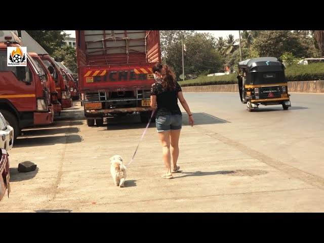 Devoleena Bhattacharjee Spotted At Filmcity Road Goregaon East With Her Pet