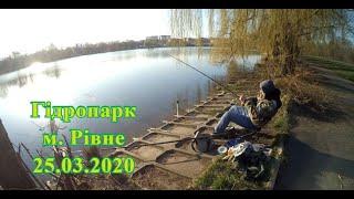 Рибалка на Гідропарку Як і де зловити плотву