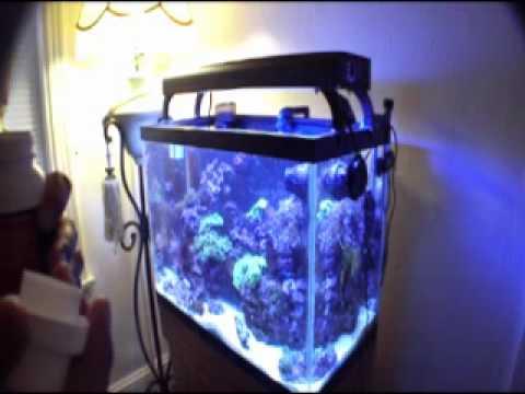 Fish tank water change cleaning tips rena xp1 maintenance for How to change fish tank water