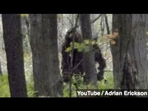 New footage dna prove bigfoot exists group says youtube new footage dna prove bigfoot exists group says newsy science sciox Images