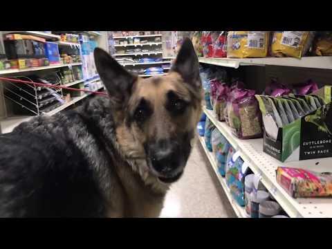 ODIN goes to PetSmart