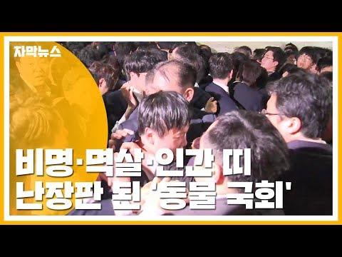 [자막뉴스] 비명 난무, 119 출동까지...난장판 된 '동물 국회' / YTN