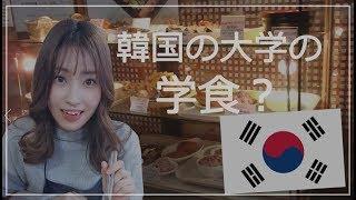 韓国の大学の学食ってどんな感じ?(キョンヒ大学編)【韓国留学】
