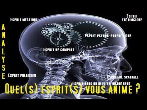 W.K.P : Quel(s) esprit(s) vous anime ? [Analyse]