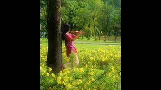 Photo Essay - An Indian Banyan Tree, Krishna Venu Flute and I