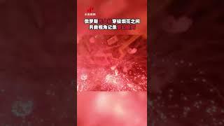 俄罗斯无人机穿梭烟花之间 另类视角记录梦幻瞬间| CCTV中文国际 - YouTube
