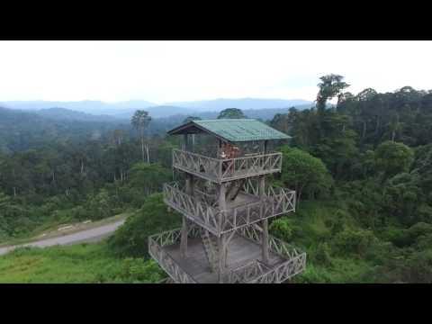 Maliau basin Sabah Borneo Drone