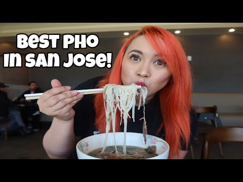 TOP 3 Pho Restaurants in San Jose