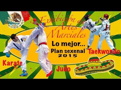 Lo Mejor Karate Taekwondo Judo Exhibición De Artes Marciales Plan Sexenal 2015.