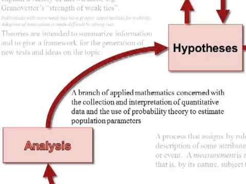 role of statistics essay