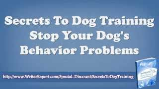 Secrets To Dog Training Stop Your Dog's Behavior Problems - Secrets To Dog Training Daniel Stevens