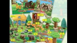 Обзор моей коллекции журнала: Животные леса