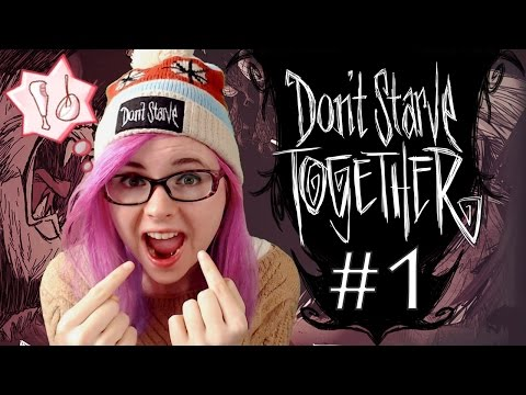 Don't Starve Together : On joue tous ensemble ! | LET'S PLAY FR #1