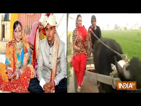 Love Knows No Boundary: American Woman Marries Haryana Boy After Love Via Facebook - India TV