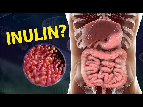 Why Your Gut Needs Inulin and How To Get It