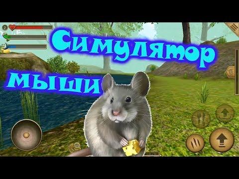 Видео Симулятор мыши играть онлайн