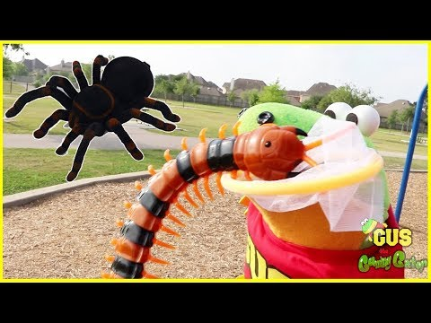 Bugs Hunting Giant Bugs At Outdoor Playground For Kids!