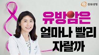 [건강톡] 유방암 얼마나 자주 체크해야 할까 - 염차경…