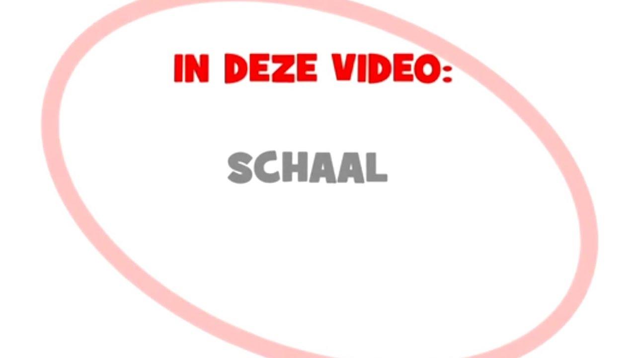 Rekenen Met Schaal Youtube
