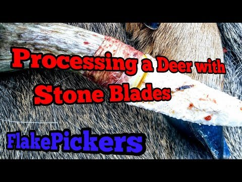 Processing a Deer With Stone Blades