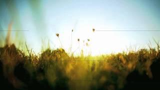 Dirty Vegas - Little White Doves (Zyblot Remix)