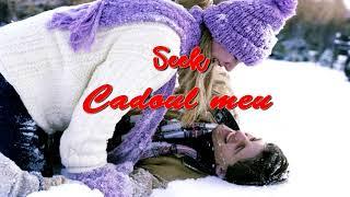 Seek - Cadoul meu
