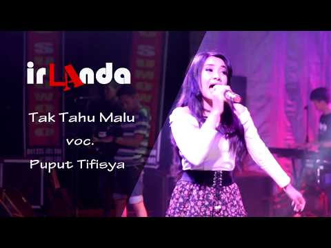 Tak Tahu Malu (Dangdut Koplo version) - Puput Tifisya - irLAnda