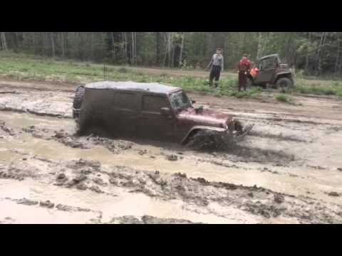 PITBULL ROCKERS CHEWING, JEEP JK DEEP MUD