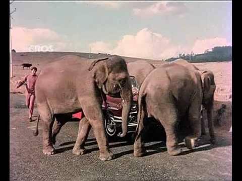Chal Chal Chal Mere Saathi (Old Video Song)   Haathi Mere Saathi   Rajesh Khanna & Tanuja