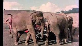 Chal Chal Chal Mere Saathi (Old Video Song) | Haathi Mere Saathi | Rajesh Khanna & Tanuja