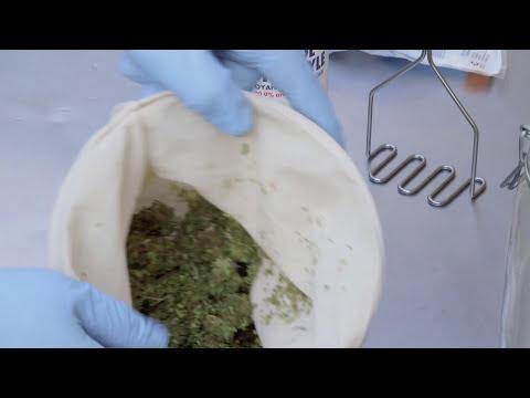 How to Make Hash Oil Using the Rick Simpson Method (RSO): Cannabasics #11