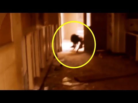 10 Most Unexplained Videos You Will Ever See