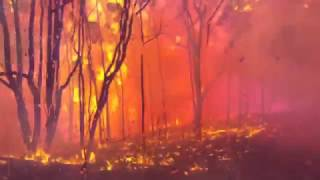 Firefighters Release Dramatic Footage from Carwoola Fires, February 17