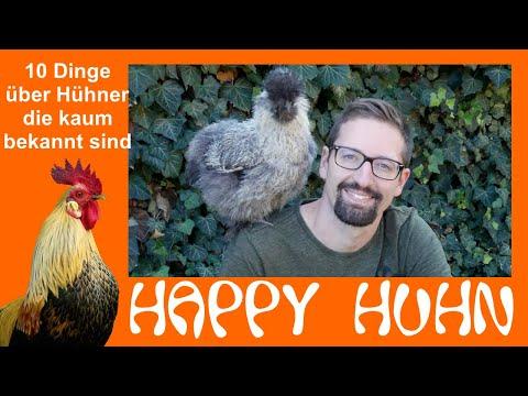 Happy Huhn Folge 68: Zehn Dinge über Hühner die du noch nicht wusstest - Zahlen und Fakten