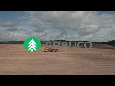 Arauco Grayling plant update  - Community
