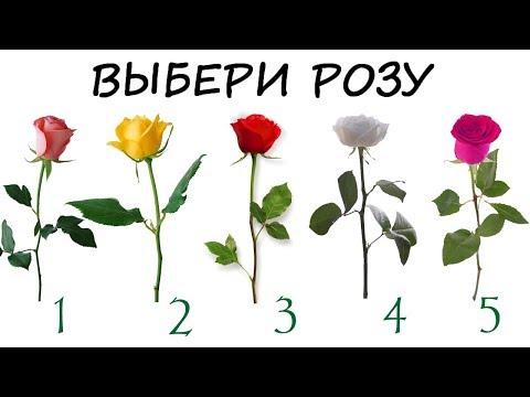 Тест! Сбудется ли твое желание и узнай свой характер! Просто выбери розу!