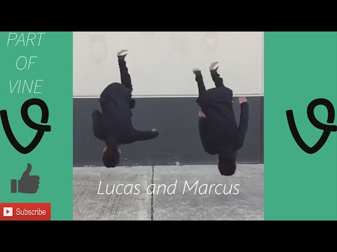 LUCAS and MARCUS - BEST VINES COMPILATION ✔️