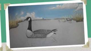 goose painting, and duck shadings