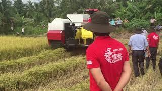Giới Thiệu Dòng Máy Gặt Đập Liên Hợp mới của YANMAR YH-series (YH700 & YH850)
