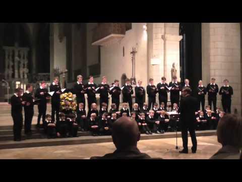 Augsburger Domsingknaben (A-Chor)