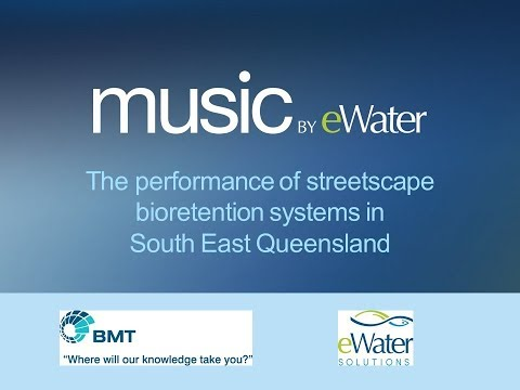 The performance of streetscape bioretention systems in South East Queensland Final