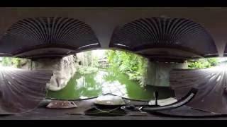 Gondwanaland - Bootstour durch Riesentropenhalle (360°) | Elefant, Tiger und Co. | MDR