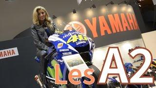 Salon de L'auto Bruxelles 2016 | Les Motos Yamaha A2
