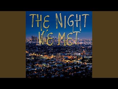 The Night We Met (Instrumental)