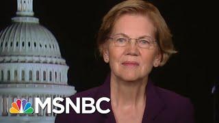 Elizabeth Warren Explains Economic Stimulus Coronavirus Package | All In | Msnbc