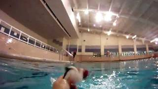 Cat in the Hat swims down 14 Feet