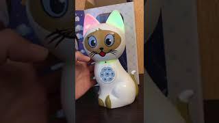 Интерактивная игрушка Кошка Соня и нюансы с usb флешкой